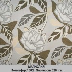magnoliya-1
